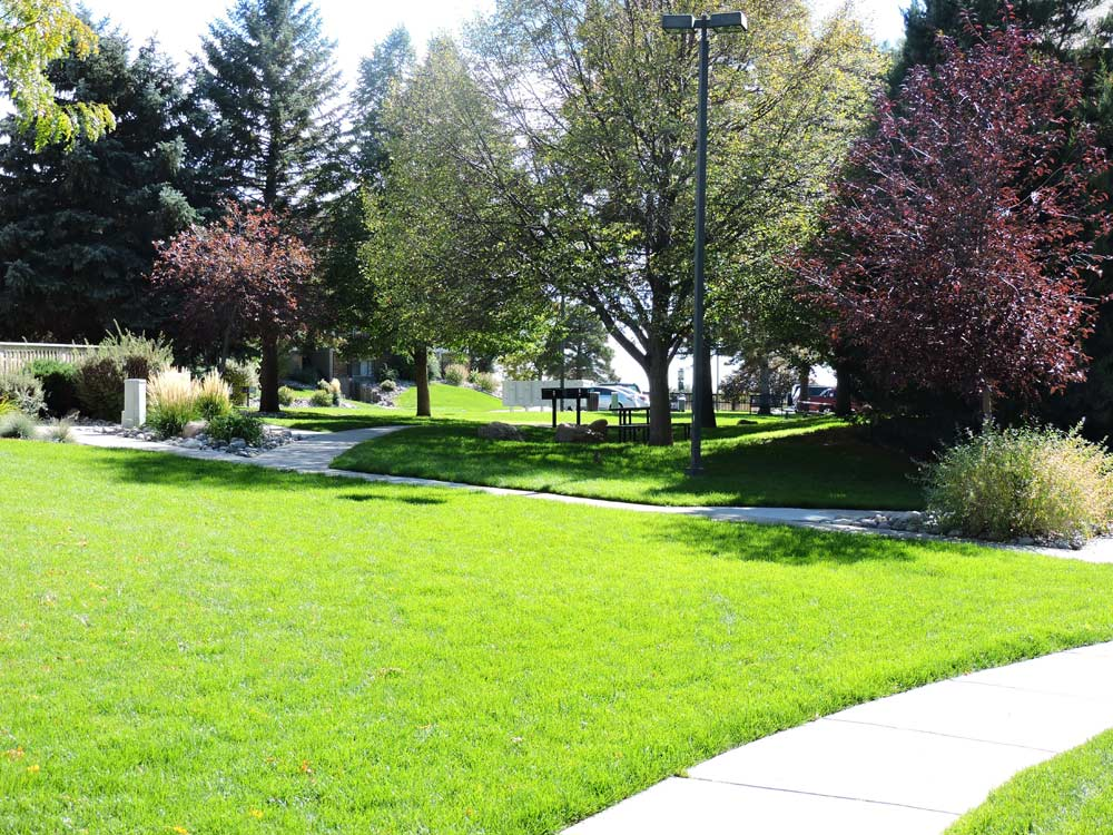 Lawn Maintenance in Colorado Springs